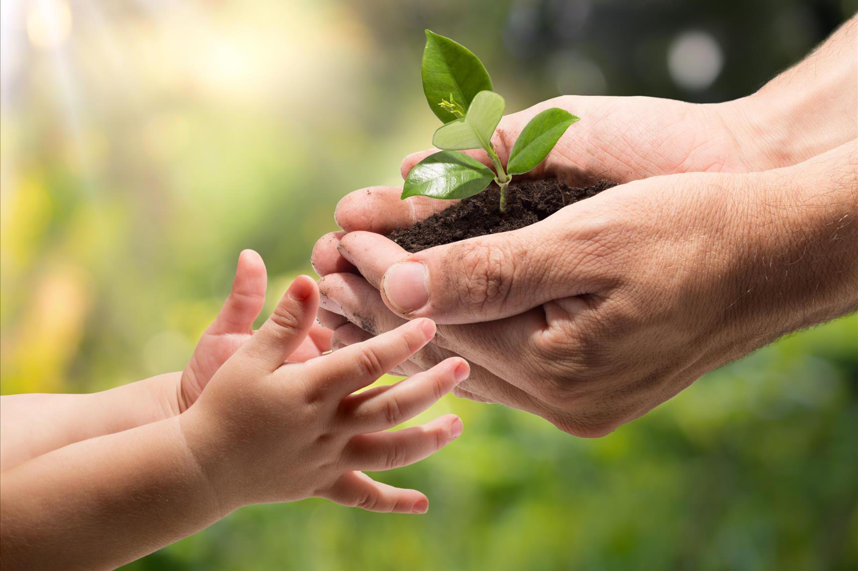 teaching-children-about-environment